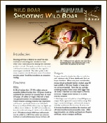 Wild Boar shot placement.